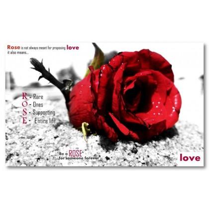 Αφίσα (αγάπη, τριαντάφυλλο, μαύρο, λευκό, άσπρο)